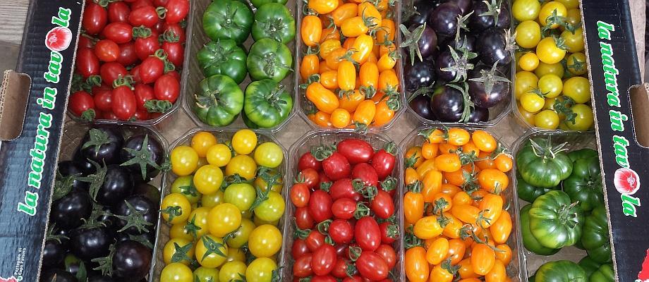 La nostra varietà di pomodori!